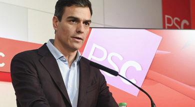 Pedro-Sánchez-valoración-PSC
